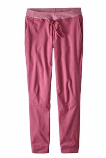 Patagonia  W Hampi Rock Pants