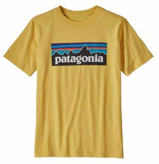 Patagonia  Boys P-6 Logo Organic T-Shirt
