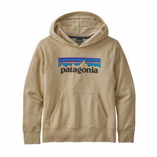 Patagonia  K´s LW Graphic Hoody Sweatshirt